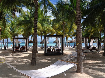 Luxury Hotel Discounts All Inclusive Grand Oasis Palm Resort In Cancun Mexico
