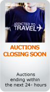 Auctions Closing Soon