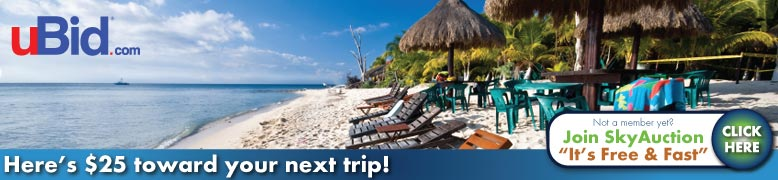 uBid Promotion- Get $25 Off any travel purchase